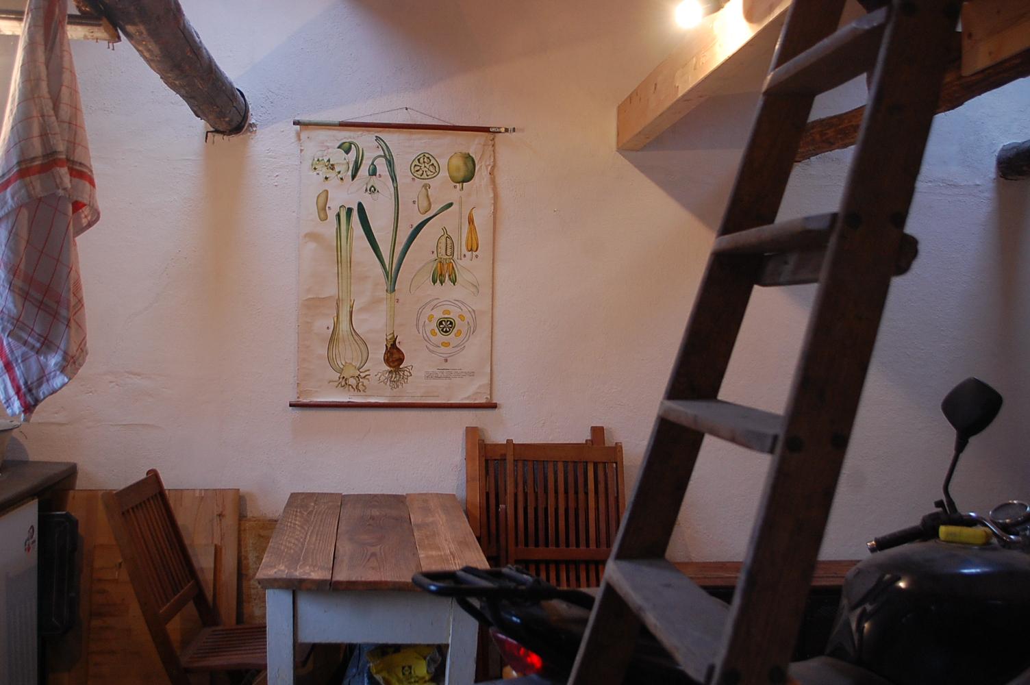 Winterzeit ist Bastelzeit: Meine Indoor-Projekte | Das Reh im Garten ...